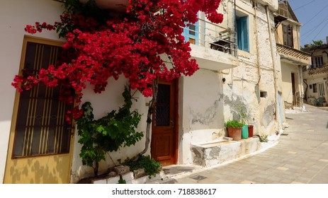 Narrow street in Kritsa village, Crete, Greece with bougainvillea flower vine