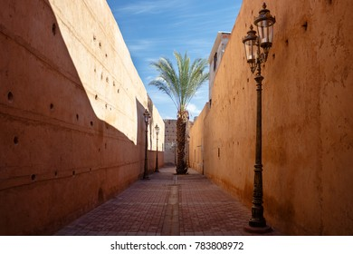 narrow street with lonely palm tree and candelabra in the royal quarter of Marrakesh