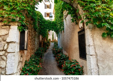 narrow street of old european town decorated with flower bushes and vine, Antibes, France