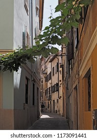 narrow streets in the historic center town Piran in Slovenian Istria on the Adriatic coast