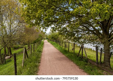 A narrow track on a dike along the Linge river in the village of Deil, the Betuwe, Gederland, in early sping, on a partly cloudy day; leaves are appearing on the trees. In the background two hikers.
