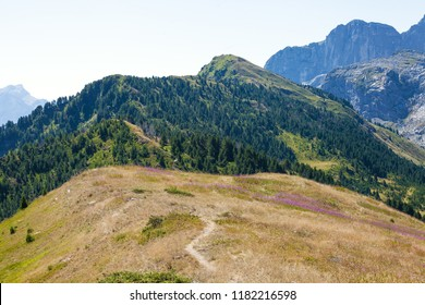 Narrow trail in a mountains