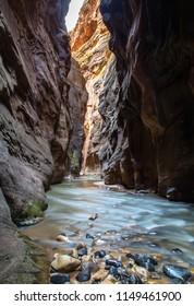 Narrow trail at Zion National Park
