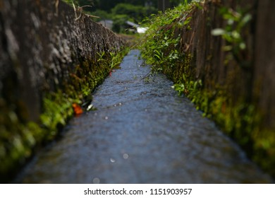 A narrow water way for rice field