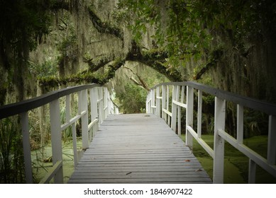 Narrow white bridge over a pond under an archway of mossy tree branches