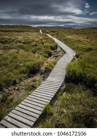 Narrow wooden path up a hill in Scotland
