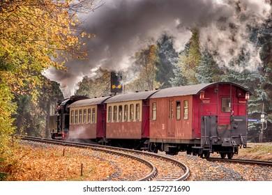 Narrow-Gauge Railway called Harzquerbahn, Selketal, Harz Mountains, Germany