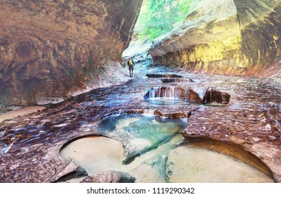 Narrows in slot canyon, Zion National Park, Utah, USA