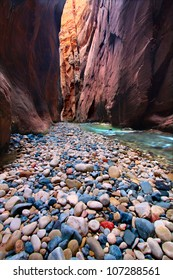 The Narrows of the Virgin River in Zion National Park of Utah