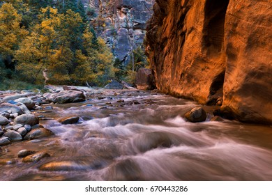The Narrows and Virgin River in Zion National Park located in the Southwestern of United States, near Springdale, Utah