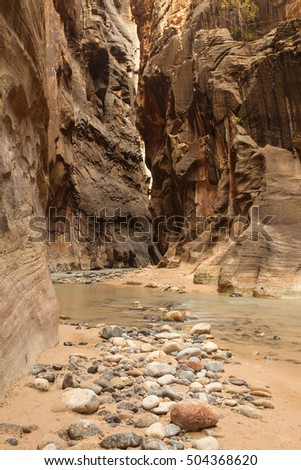 The Narrows and the Virgin River in Zion National Park, Utah