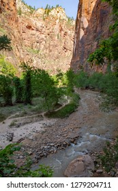 The Narrows in Zion National Park, Zion Canyon, Utah, USA