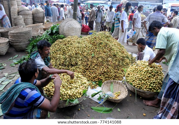 Narsingdi Bangladeshjune 10 2016 Bangladeshi Farmers Stock Photo