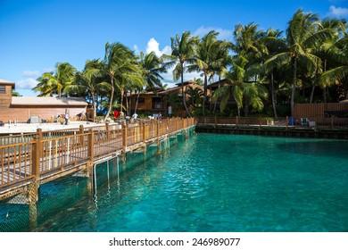Nassau, Bahamas - November 12: View of Blue Lagoon, a private island near Nassau, Bahamas on November 12, 2014.