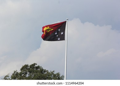 The national flag of Papua New Guinea