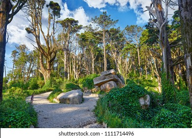 National natural park in Sintra, Portugal. Walking tracking path among big old trees and huge stone boulders in the forest. Early morning time with sunrise.