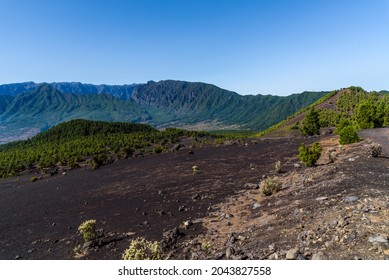 National Park of Caldera de Taburiente from Llano del Jable Astronomical Viewpoint, Cumbre Vieja Volcano. Volcanic landscape with Canarian Pine Trees Forest, Pinus canariensis. Volcano of San Juan and