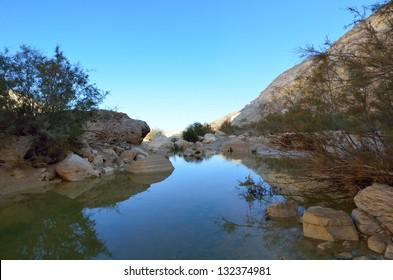 National park Ein Avdat spring. Negev Desert. Israel
