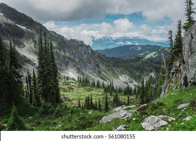 National Park Revelstoke in Canada with boreal forest and rocky mountains and glacier behind during summer afternoon with clouds and sky