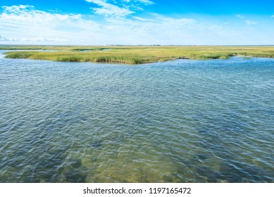 National seashore in Cape Cod with calm water in the wetlands of Provincetown with clear water on a sunny, summer day.