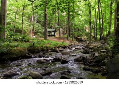 Natironal Park Harz, Ilsenburg, Heinrich-Heine Hiking Trail