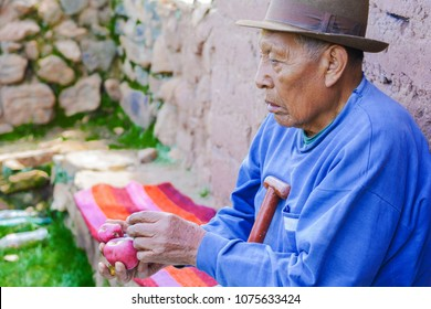Native american old man holding purple potato.