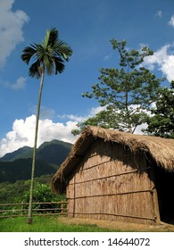 Native House -- an aboriginal straw hut in Taiwan's mountains