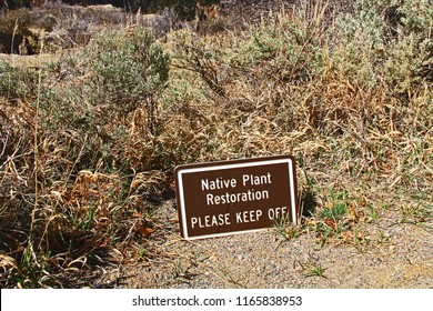 Native plant restoration in progress, please keep off, sign in Black Canyon of the Gunnison National Park and recreation area at Chasm View, near Montrose, Colorado, USA.