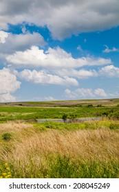 Native prairie in Nebraska.