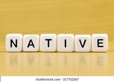 NATIVE word on blocks