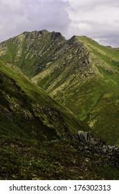 Natural Alaska
