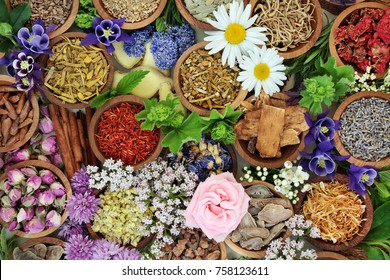 Natural alternative herbal medicine with dried and fresh herbs and flowers forming a colourful background. Top view.