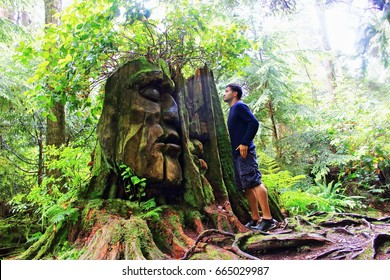 Natural ancient discovery in the forest! Man looks tree with face in Stanley Park. Secret  Vancouver.