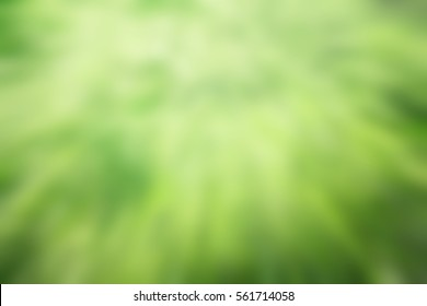 Natural background , blurred abstract backgroud