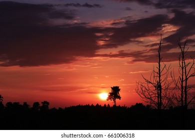 Natural background, cloudy sunset in twilight time