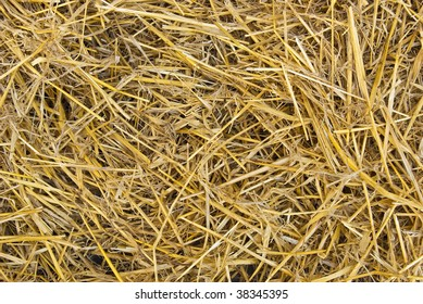 Natural background from dry straw and hay