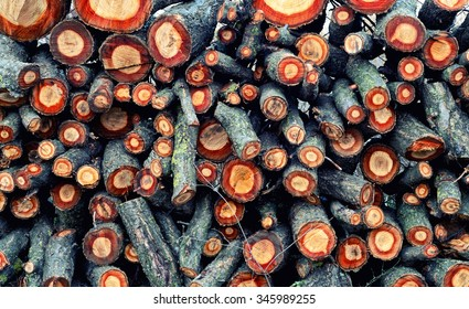 Natural background - texture, stack of oak tree firewood