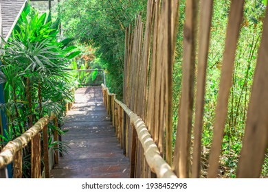 The natural background of the wooden bridge admiring the seaside scenery, facilitating walking, blurred breezes, natural beauty