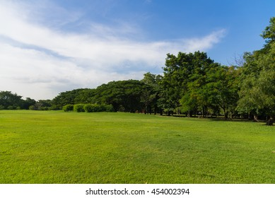 Natural backgrounds in Parks at Thailand.