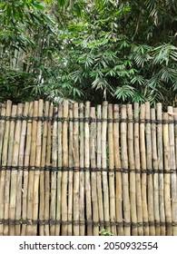 Natural Bamboo fence - pagar bambu alami