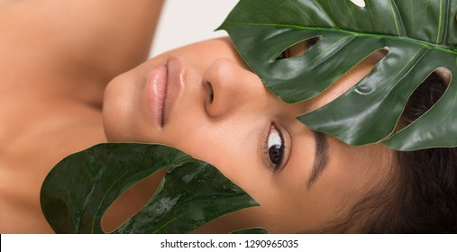 Natural beauty. African-american woman with tropical leaves in spa, on white background