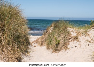 Natural beauty beach access at shore line of baltic sea at sunny clear day