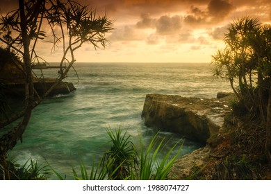 the natural beauty of the beach at sunset