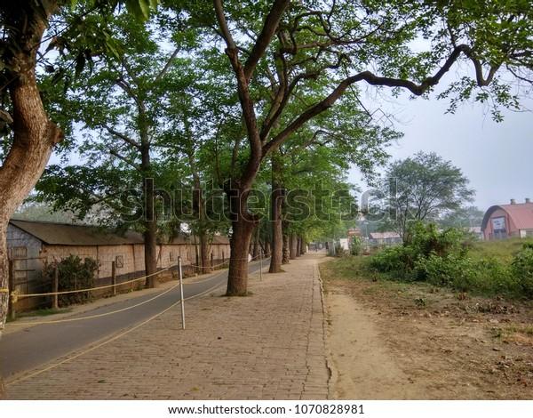 Natural Beauty Mayapur Iskcon Stock Photo (Edit Now) 1070828981