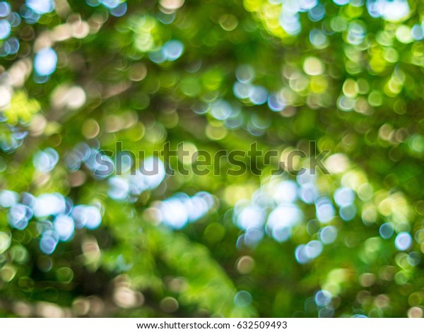 Natural bokeh abstract pattern background.Fresh healthy green bio background with abstract blurred foliage and bright summer sunlight and a central copyspace for your text or advertisment