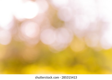 natural bokeh and blur background