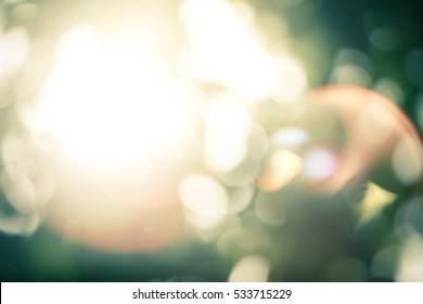 Natural Bokeh sun rays green lights abstract.