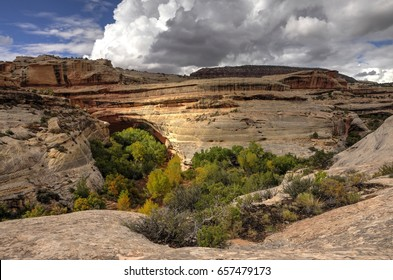 Natural Bridges National Monument, Kachina Bridge