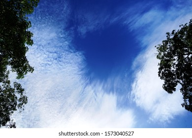 Natural clouds, wonderful patterns. A deep blue sky with weird clouds pattern among the forest trees. The sky with clouds like water waves around the deep blue hole sky.