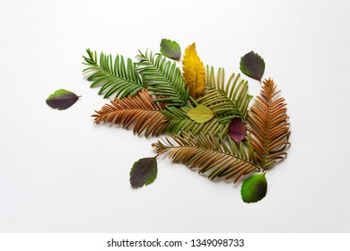 Natural composition of different leaves presented on a gray background with copy space. Creative layout for postcards